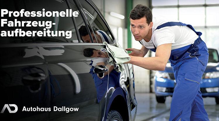 Professionelle Fahrzeugreinigung